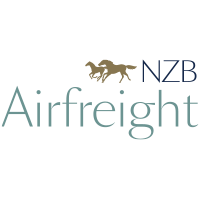 NZB Airfreight logo