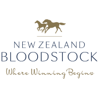 NZB Where Winning Begins logo
